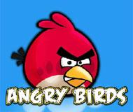 Angry Bird Shot