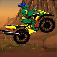 Ninja Turtle Death Desert